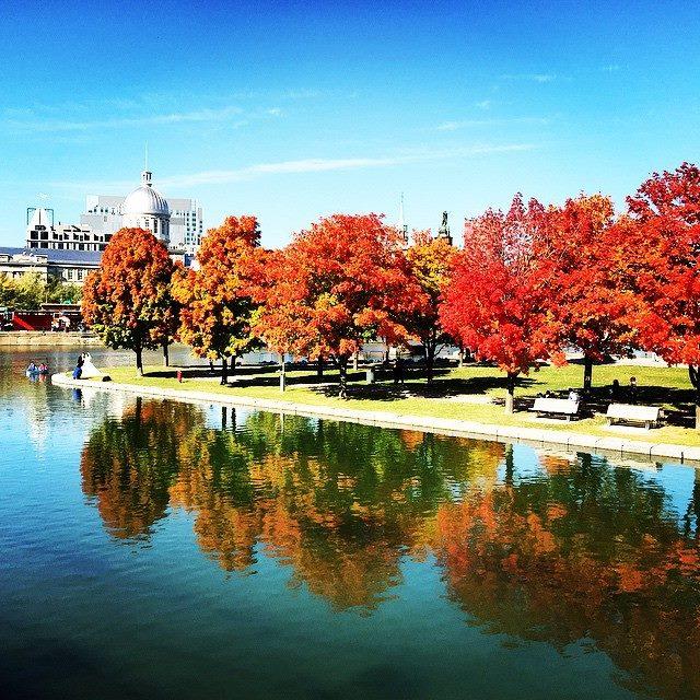 5 endroits pour apprécier l'automne