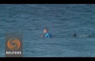 Surfer attaqué par un requin