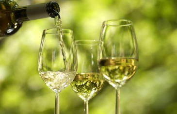 La soirée des vins allemands ce soir à Montréal