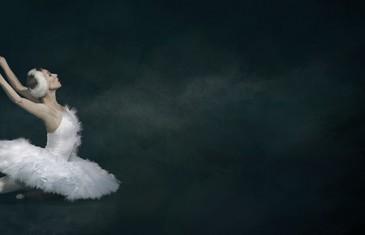 Le spectacle indémodable du Lac des Cygnes à Montréal