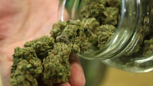 Ô Cannabis: un livre éclairant sur la légalisation du pot au Canada