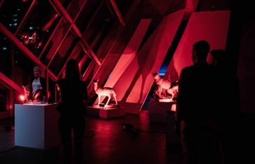 Du talent à revendre au Musée des Beaux-Arts de Montréal