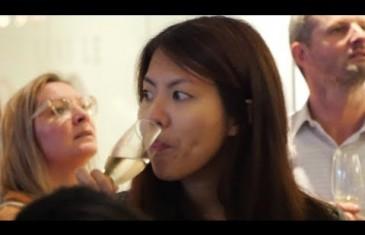 Prevel launches Phase 4 of the condo project 21e Arrondissement   Video