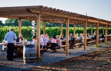 Vignoble Rivière du Chêne: un magnifique endroit pour déguster et pique-niquer à moins de 40 minutes de Montréal
