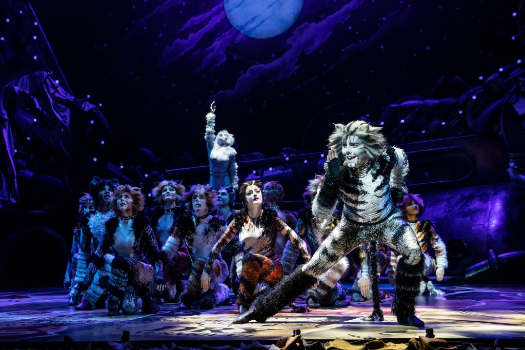 Dan Hoy as 'Munkustrap' and the North American Tour of CATS. Photo by Matthew Murphy.2019-2