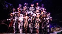 VIDÉO   La comédie musicale CATS présentée à la Place des Arts au mois de mars