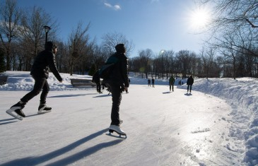 C'est parti pour les activités hivernales sur le Mont-Royal