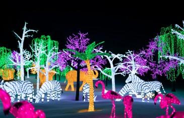 Illumi – La Féérie des Lumières par Cavalia présentée à Laval jusqu'en janvier | Photos