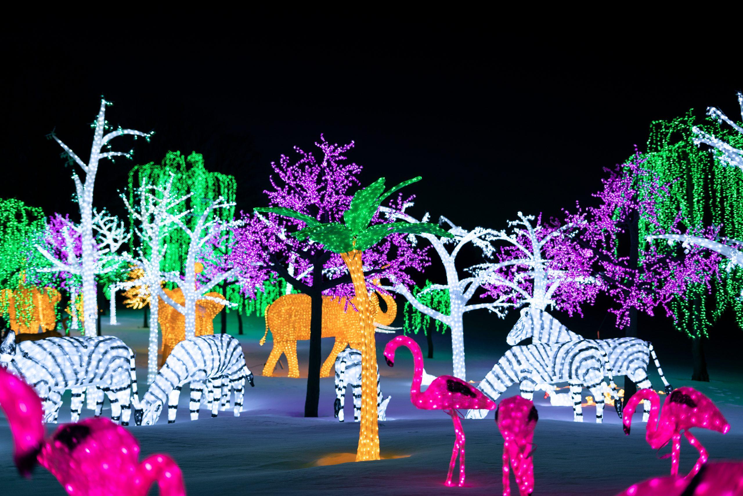 Illumi – La Féérie des Lumières par Cavalia présentée à Laval jusqu'en janvier   Photos